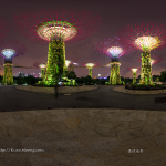 Supertree Gardens by The Bay Panorama